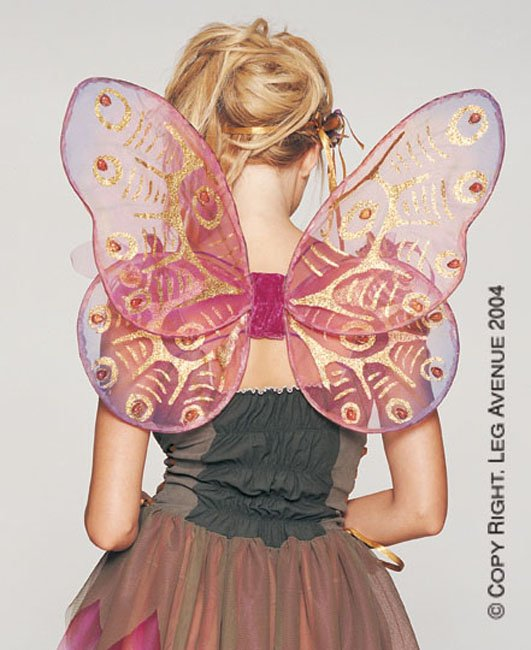 Jeweled Butterfly Organza Wings
