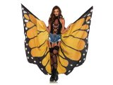 Festival Butterfly Wings